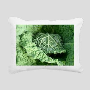 cabbage Rectangular Canvas Pillow
