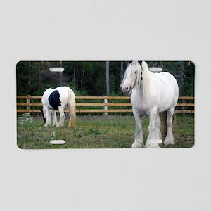 Gypsy Vanner Horses Rose Pe Aluminum License Plate