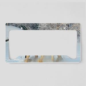 ic_1 License Plate Holder