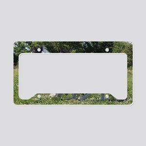 DHF_1 License Plate Holder