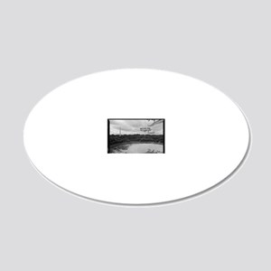 Arecibo 8 Poster 20x12 Oval Wall Decal