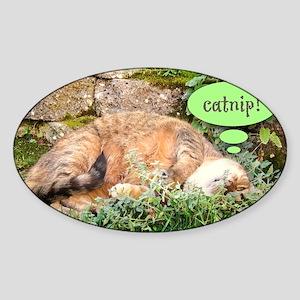 Mona Catnipping Sticker (Oval)