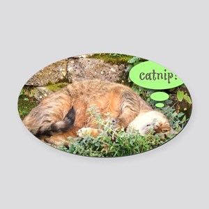 Mona Catnipping Oval Car Magnet