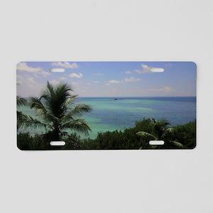 IMAG0814-1 Aluminum License Plate