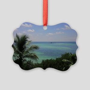 IMAG0814-1 Picture Ornament