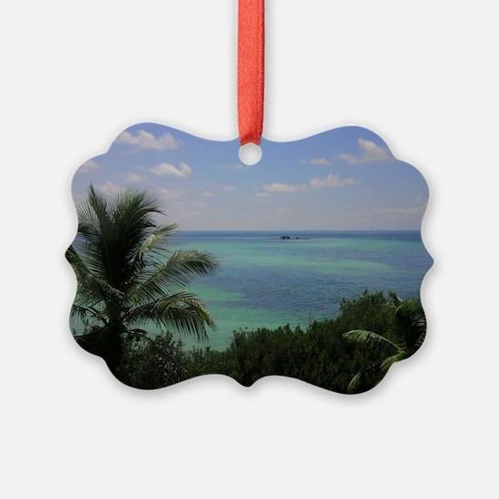 IMAG0814-1 Ornament