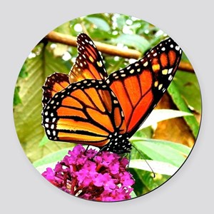 Monarch Butterfly Wall Calendar P Round Car Magnet