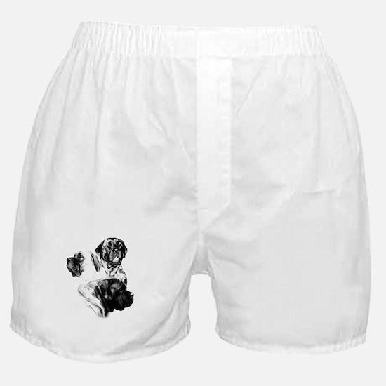 Charcoal 25 Boxer Shorts