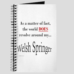 Welsh Springer World Journal