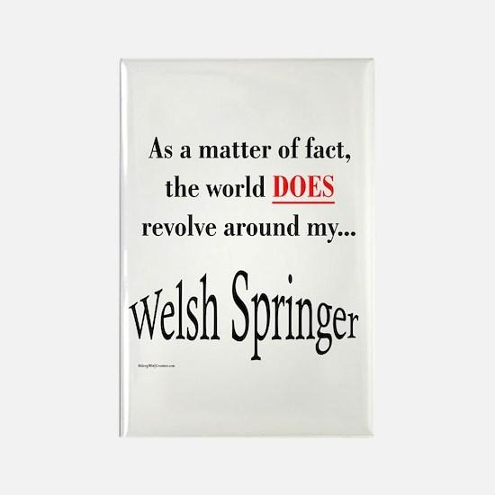 Welsh Springer World Rectangle Magnet