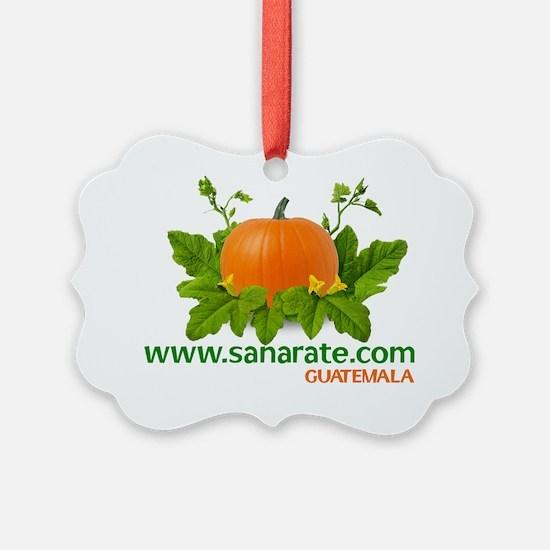 t-shirt_10x10_sanarate_logo_white Ornament