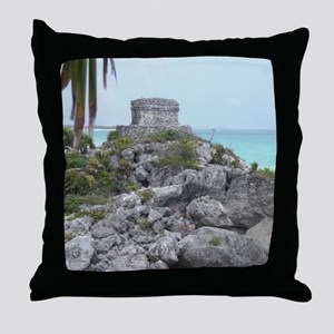 CIMG3177 Throw Pillow