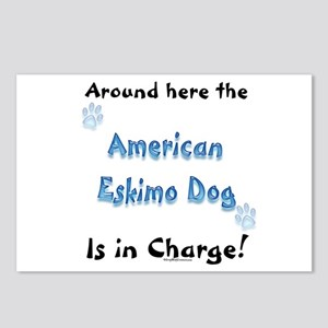American Eskimo Charge Postcards (Package of 8)
