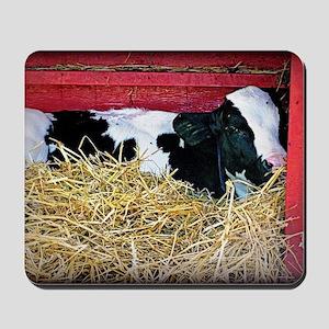 Cow Photo Mousepad