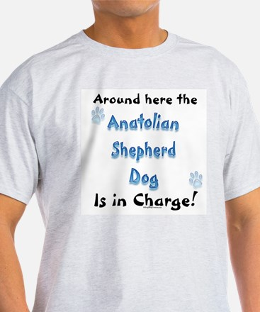 Anatolian Charge T-Shirt