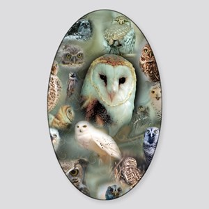 Owls Sticker (Oval)