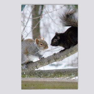 SQF10.526x12.885 Postcards (Package of 8)