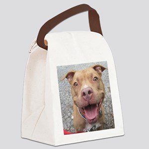 Bailey Smiley-Card Canvas Lunch Bag