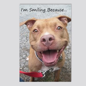 Bailey Smiley-Card Postcards (Package of 8)