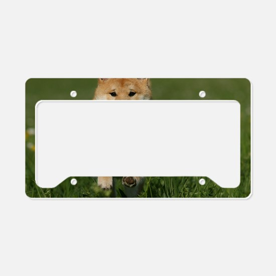 cal_shiba_jan License Plate Holder
