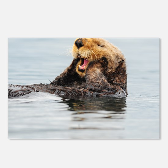 385x245_wallpeel_otter_1 Postcards (Package of 8)