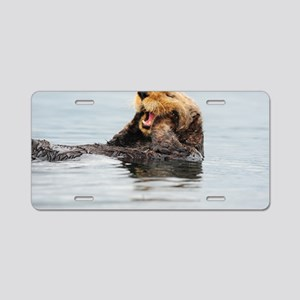 385x245_wallpeel_otter_1 Aluminum License Plate