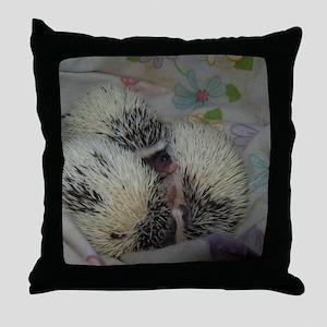 100_5939 Throw Pillow