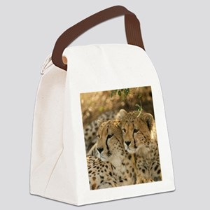 02 (2) Canvas Lunch Bag
