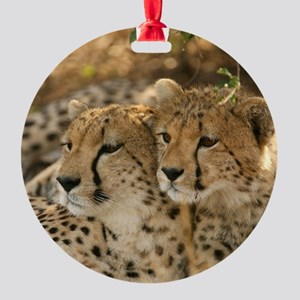 02 (2) Round Ornament