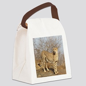 09 (2) Canvas Lunch Bag