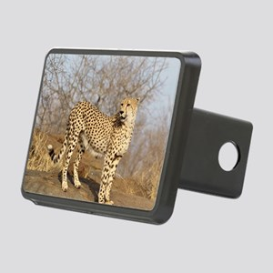 09 (2) Rectangular Hitch Cover