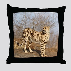 09 (2) Throw Pillow