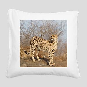 09 (2) Square Canvas Pillow