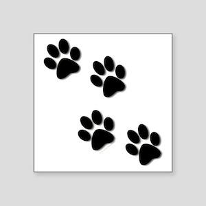 "paws Square Sticker 3"" x 3"""