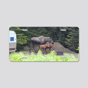 385x245_wallpeel_moose_1 Aluminum License Plate
