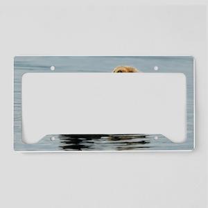 385x245_wallpeel_otter_2 License Plate Holder