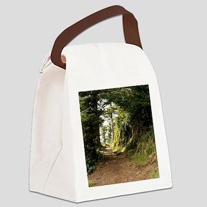 01jan-wildeshots-123110 193 Canvas Lunch Bag