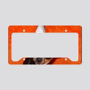 AbbeyCal3 License Plate Holder