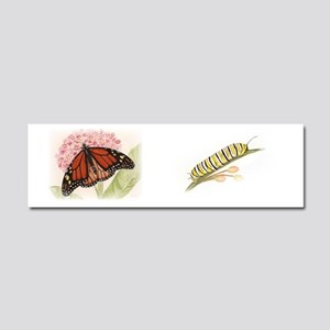 butterfly composite Car Magnet 10 x 3