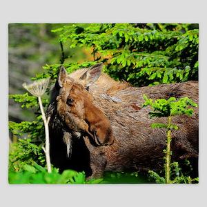 22x14_wallpeel_moose King Duvet