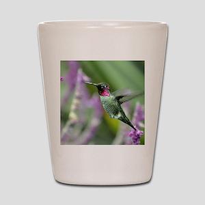cafe-press Shot Glass