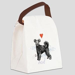 pumi T1-K Canvas Lunch Bag