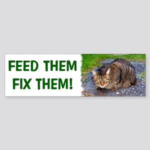 Feed/Fix with Feral Cat Bumper Sticker