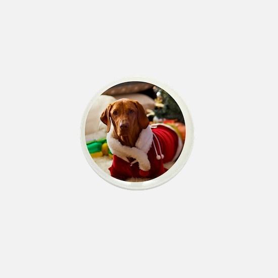 Ornament_Round_Holly_1 Mini Button