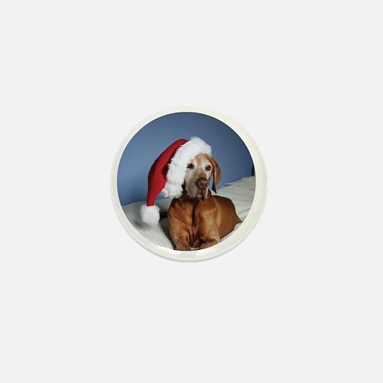 Ornament_Round_Flynn_1 Mini Button