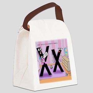 Pi_78 Baby Formula (10x10 Color) Canvas Lunch Bag