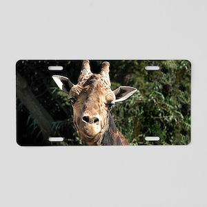 SmilingGiraffe Coin Aluminum License Plate