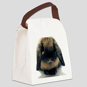 Corifront Canvas Lunch Bag