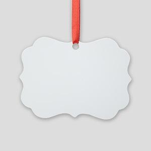 Slightly Funnier White Picture Ornament