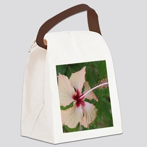 Fiji 3.2 Canvas Lunch Bag